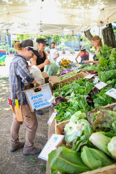 UCSC Farm & Garden Market Cart opens Friday, June 1